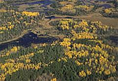 public lands pages forfeited landsaspx